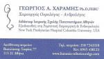 Χαραμής Γεώργιος PhD, FEBU